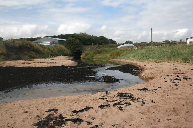 The coast near East Haven, Angus