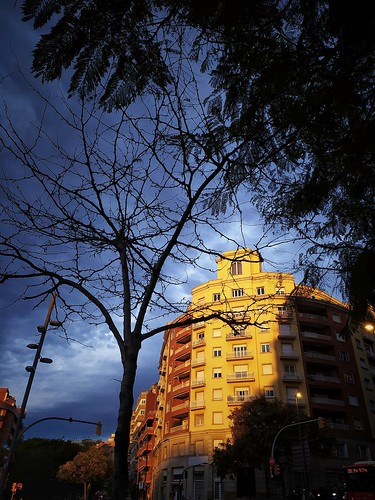 luciojosémartínezgonzález luciojmartinez barcelona barcelonaexperience ngc hdr asbeautifulasyouwant ciudad city building edificio tree arbol cataluña catalonia españa spain sunrise amanecer