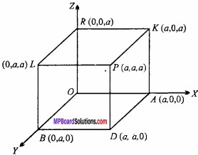 MP Board Class 12th Maths Important Questions Chapter 11 त्रि-विमीय ज्यामिति img 46