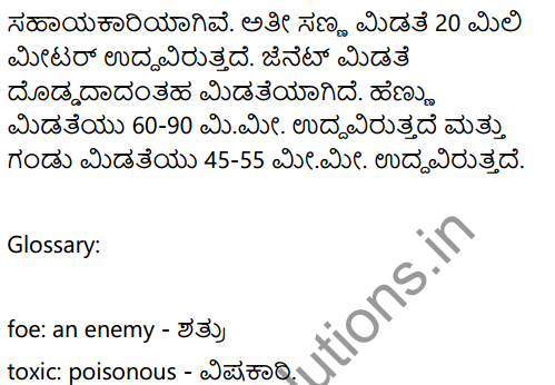 A Chat with a Grasshopper Summary in Kannada 3