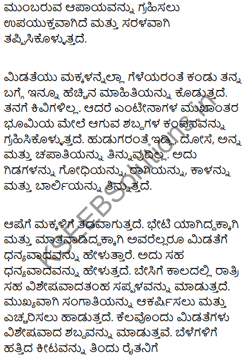 A Chat with a Grasshopper Summary in Kannada 2