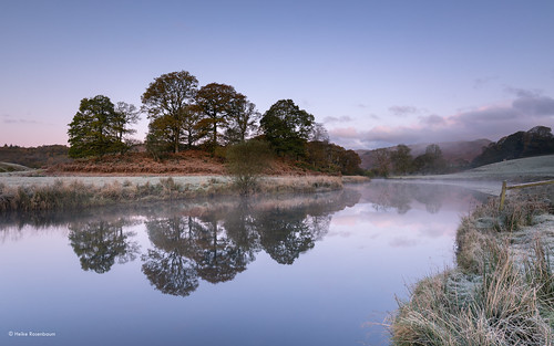 lakedistrict cold frost mist riverbrathay sunrise southlakeland river presunrise elterwater water trees copseoftrees grass reflections spiegelungen