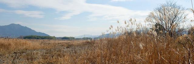 Yasugawa (野洲川) riverbed