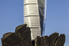 A Log and Turning Torso