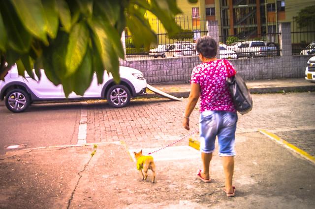 The lady with the Dog. (Inspired by Anton Chekhov's Novel) La Dama del Perrito (Inspirada en la novela de Anton Chejov)