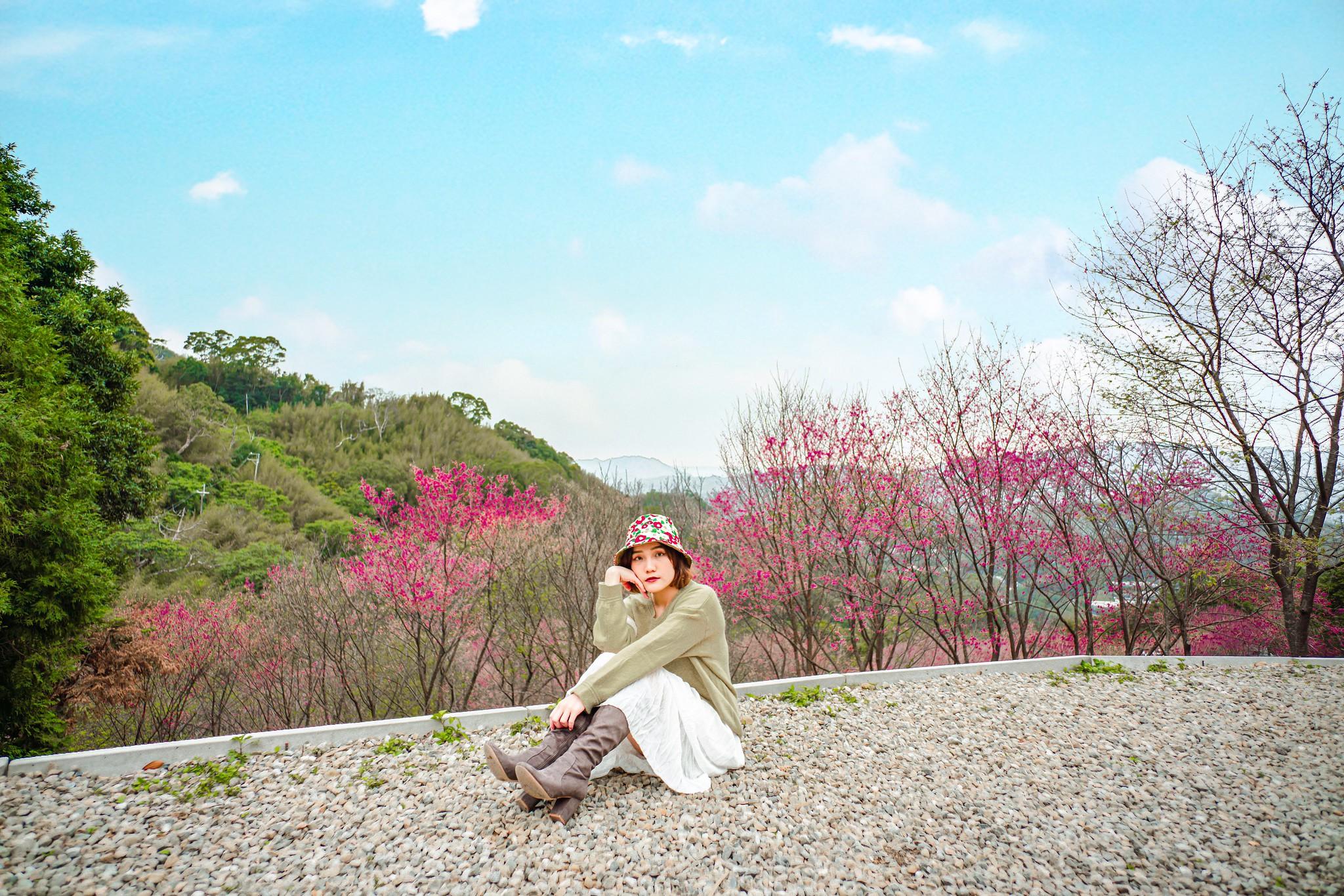 翠墨莊園 | 山中櫻花秘境。沐浴櫻花林中 翠墨莊園怎麼去?