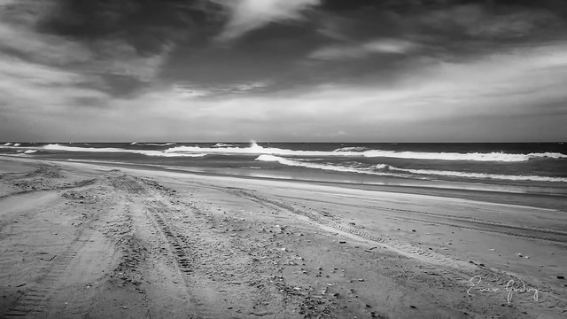 Beach in b&w