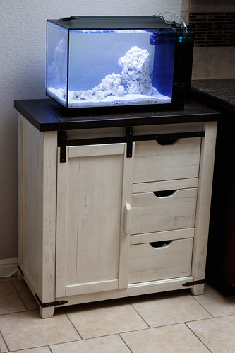 Fluval EVO 13.5 on furniture stand