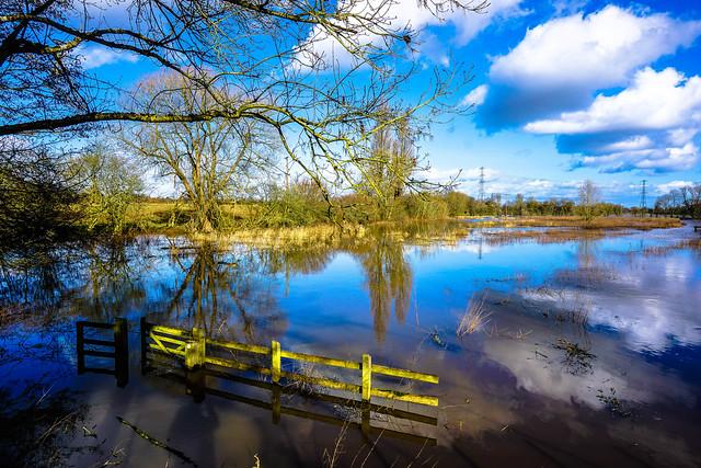 Flooded fields 4