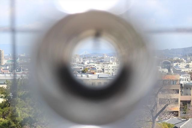 okazakijo-sakura042