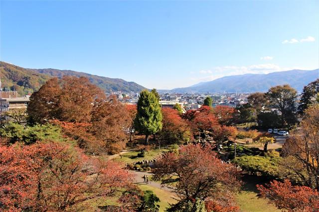 takashimajo-sakura015