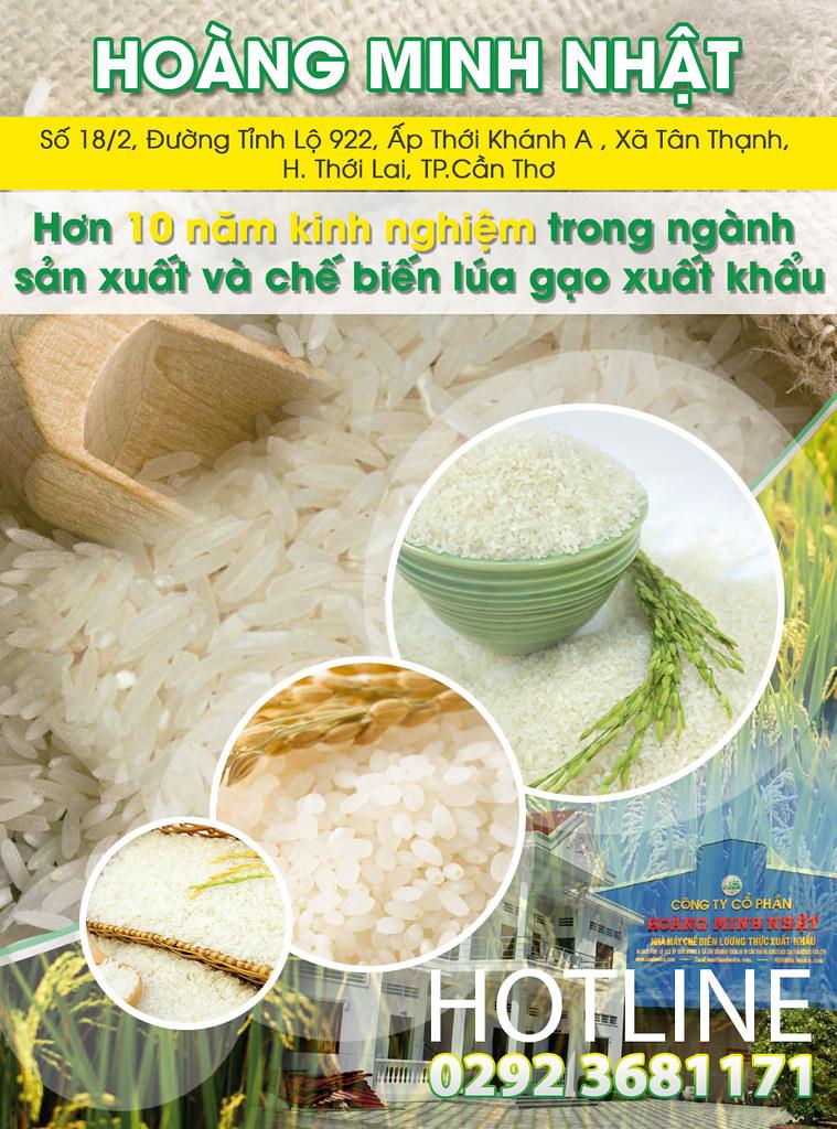 Công ty xuất nhập khẩu lúa gạo Cần Thơ 0915326788