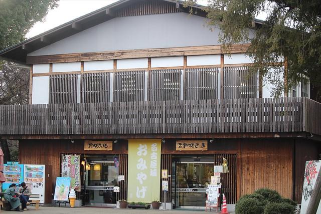 nagoyajo-sakura040