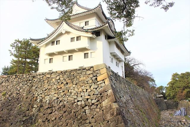 nagoyajo-sakura034