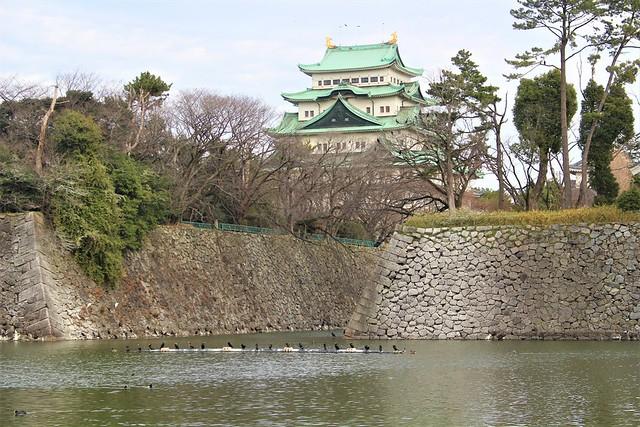 nagoyajo-sakura027