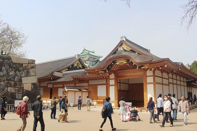 nagoyajo-sakura017