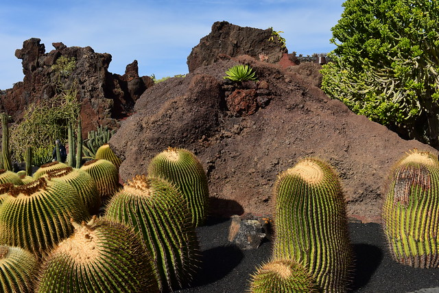 Lanzarote, Islas Canarias, Spain, Nikon_D810, January_2020_092