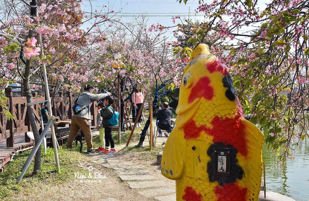 台中櫻花種苗場 彰化芬園花卉園區10