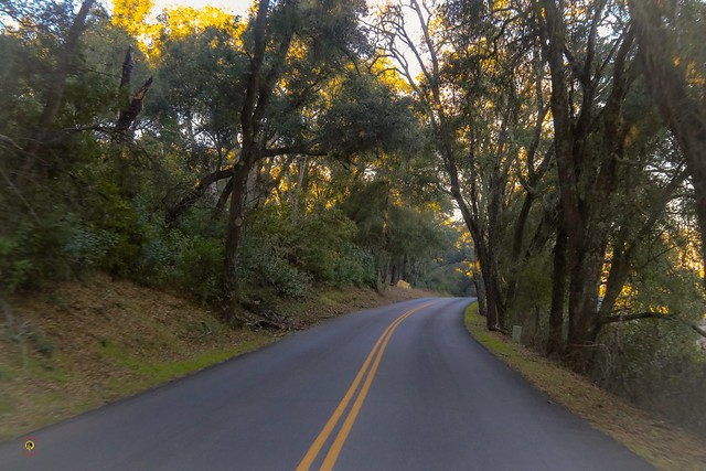 There is a reason why the city is named @pasorobles   #nature #landscape #road #pasorobles #winecountry #visitpasorobles #slocounty #soslocal #sanluisobispo #naturephotography #landscapephotography #ruralphotography #travelphotography #paso
