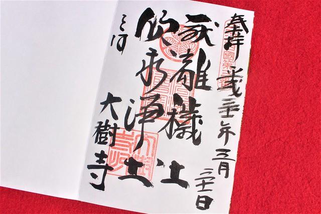 okazakijo-sakura028
