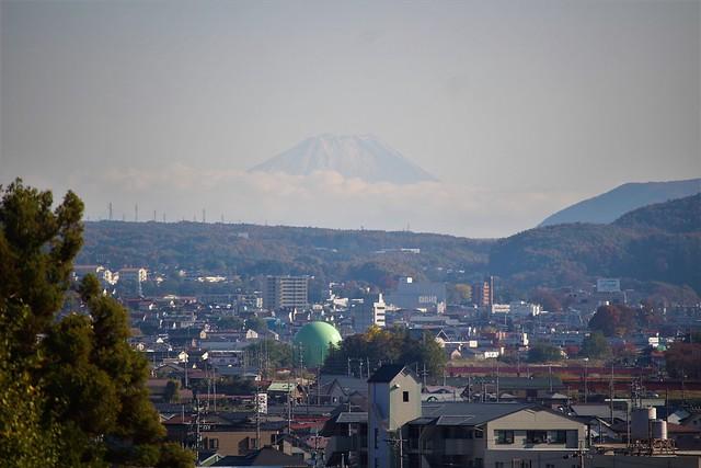 takashimajo-sakura016