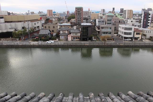 nagoyajo-sakura047