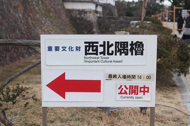 nagoyajo-sakura042