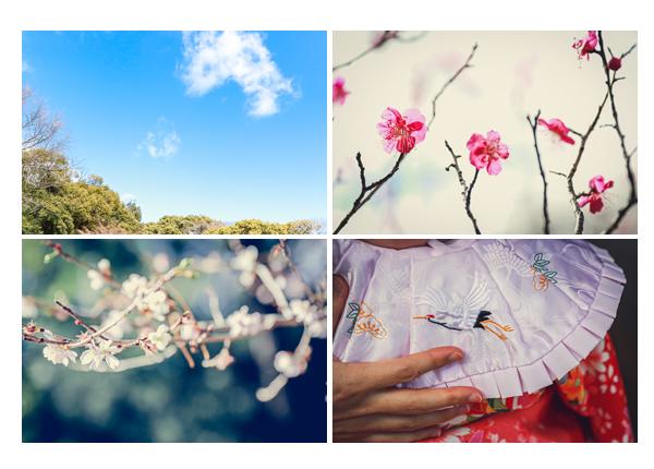 梅の花が咲く頃にお宮参り 鶴の絵のスタイ(よだれかけ)
