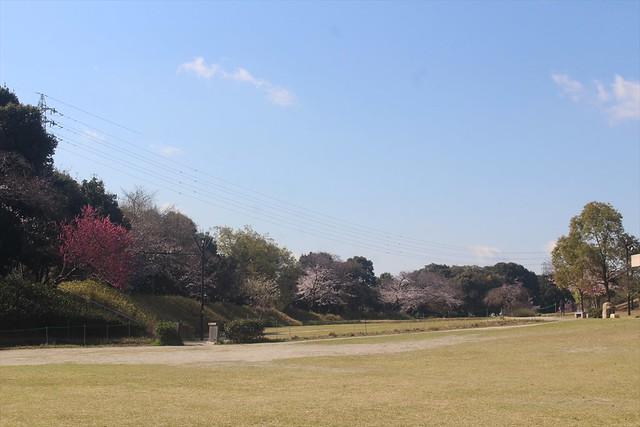 komakiyama-gojoin009