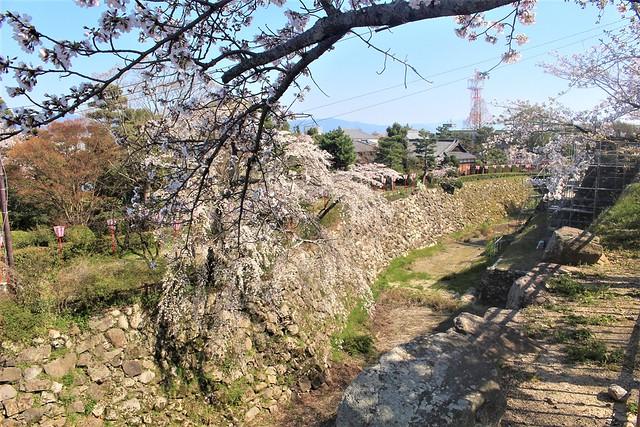 yamatokooriyama-gojoin043