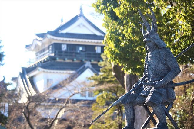 okazakijo-sakura020