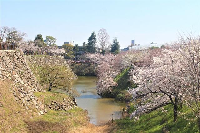 yamatokooriyama-gojoin016