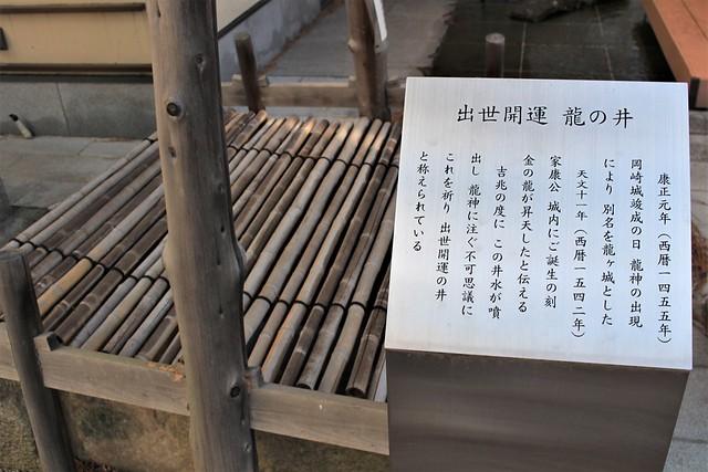 okazakijo-sakura011