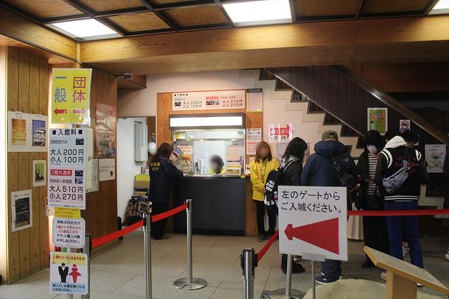 okazakijo-sakura045
