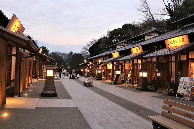 nagoyajo-sakura058