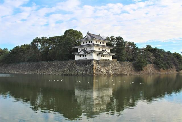 nagoyajo-sakura030