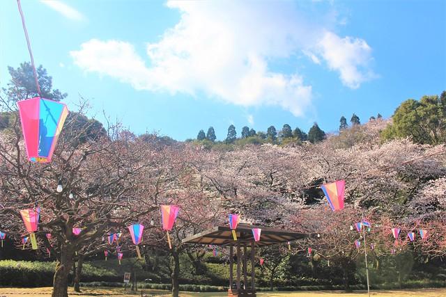 komakiyama-gojoin014
