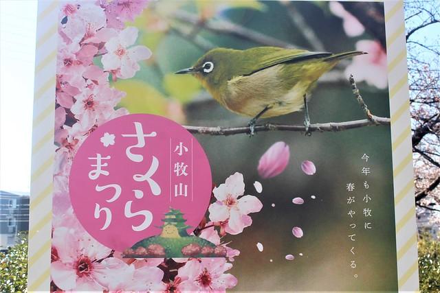 komakiyama-gojoin006