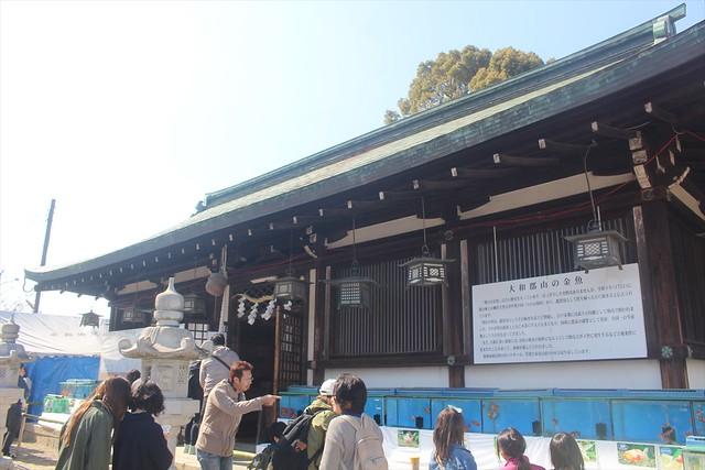 yamatokooriyama-gojoin032