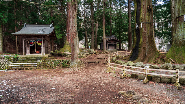 A Walk to Shinto Shrine