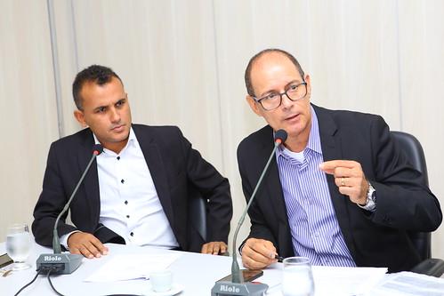 2ª Reunião Ordinária -  Comissão de Desenvolvimento Econômico, Transporte e Sistema Viário