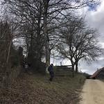 2020_02_12_Frienisberg (28)