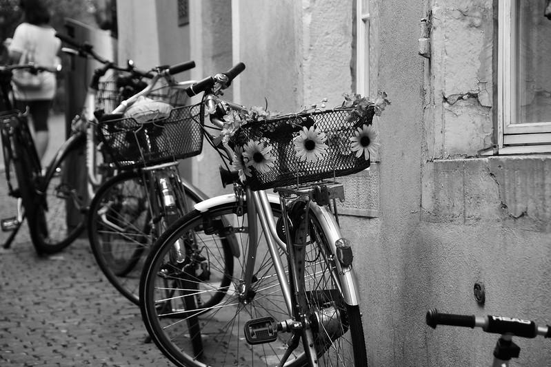 Bikes 15.06.2019