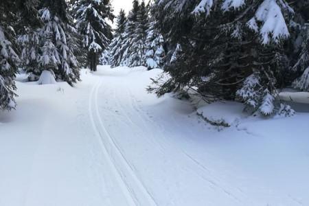 Na horách připadl nový sníh, panují ideální podmínky