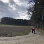 2020_02_12_Frienisberg (37)