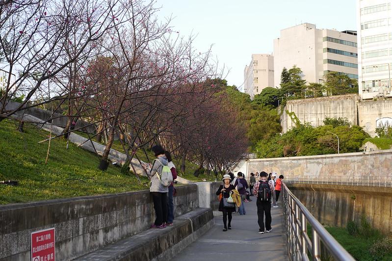 台北東湖樂活公園 內溝溪
