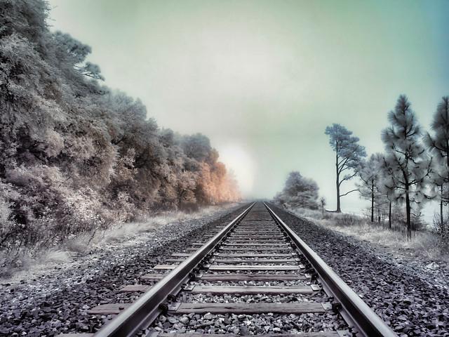 Infrared Tracks in the Morning Fog Along Pensacola Bay