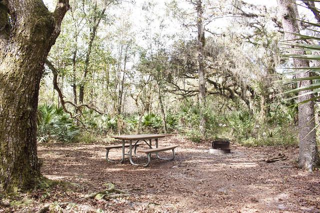 Joshua Creek Campsite