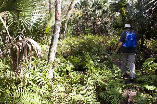 Joshua Creek, Florida Trail