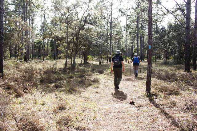 Joshua Creek Trailhead